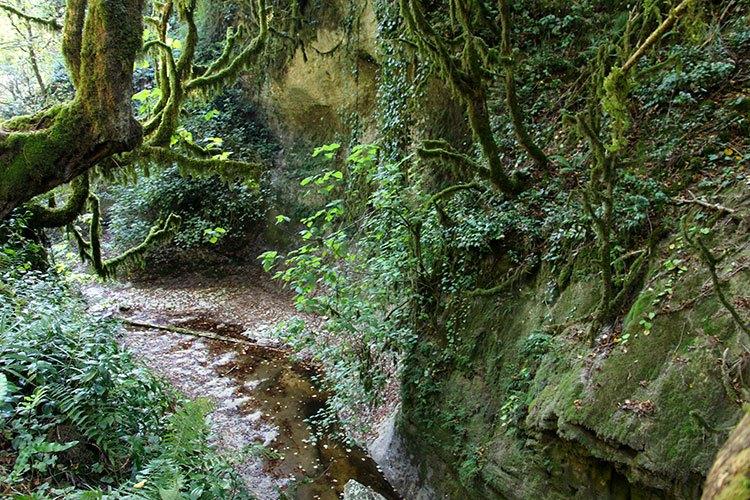Зеленый каньон Новый Афон, Абхазия